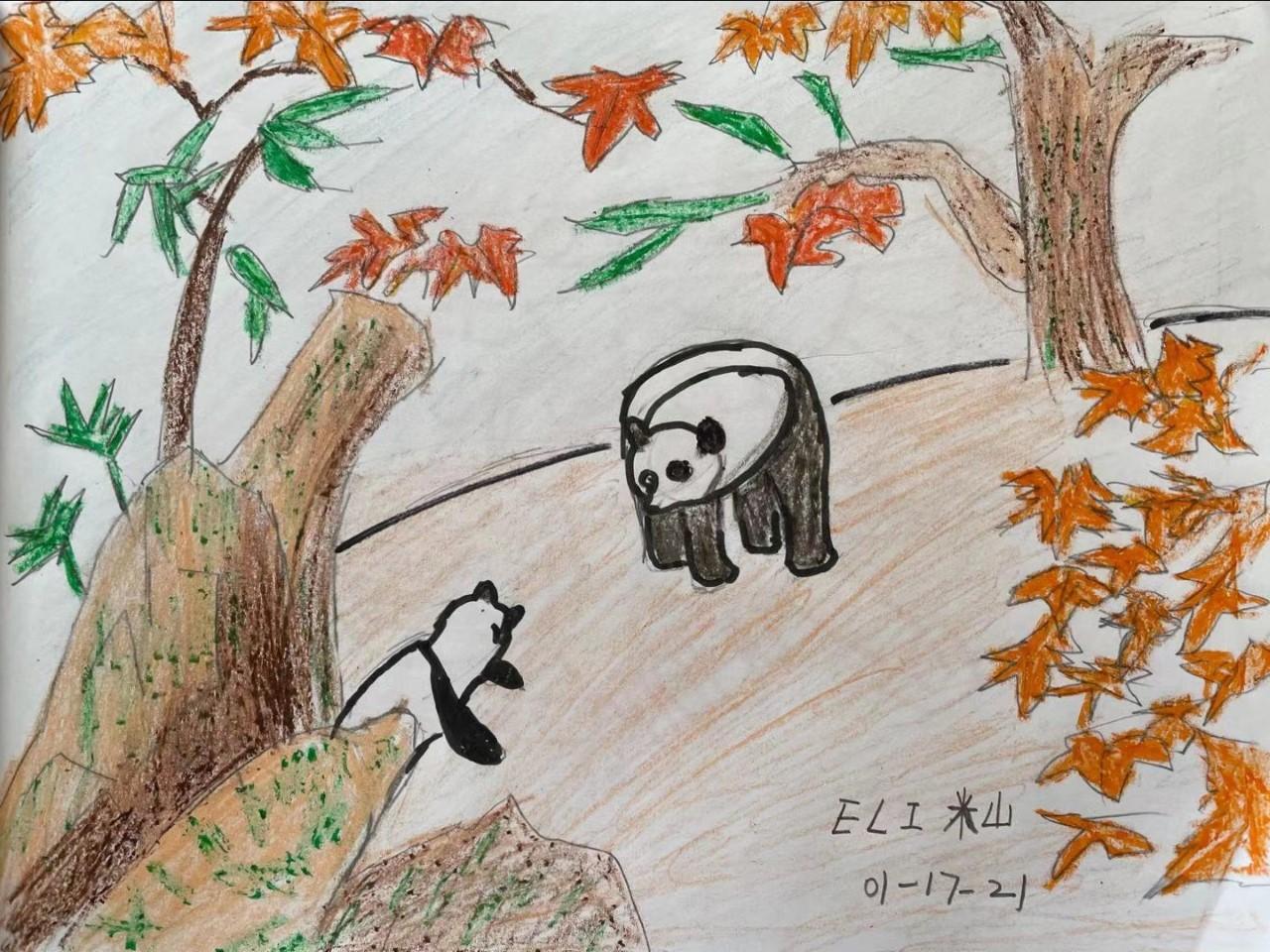 黄老师Eli-panda